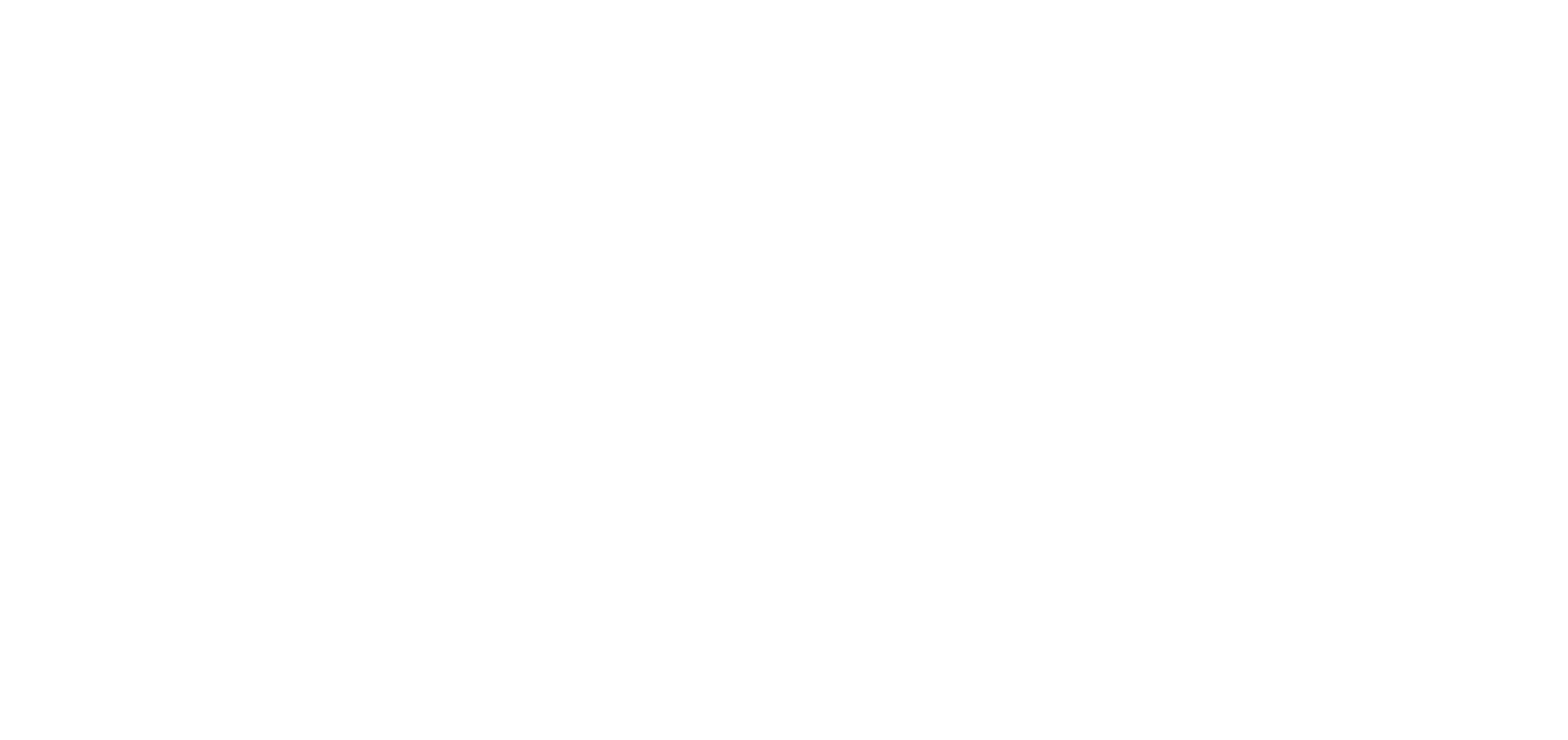 InstitutoVisaoFuturo_branco-transparente